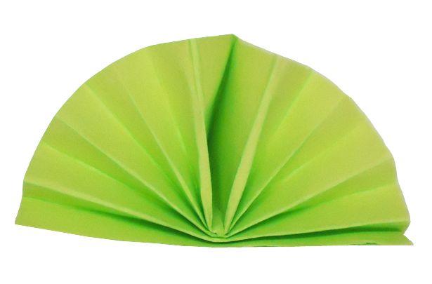 Serviette céli-ouate vert pomme 38 x 38 cm Pqt 50