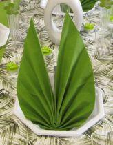 Serviette non tissée Dunilin vert herbal green 40 x 40 cm Pqt 50